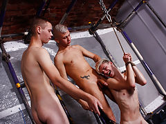 Nude men blond haired and hairy pics and...