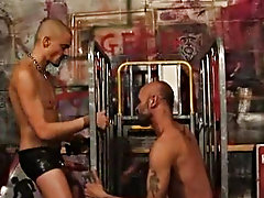 Those gay guys look terribly on a high when big cocks fill their tight asses gay bears webring