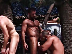 These four hunks show off all they've learnt by eating ass and sucking cock gay naked hunk at Alpha Male Fuckers